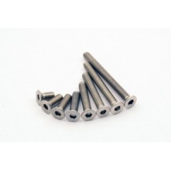titanium Countersunk Head Tapping Screws M2 x 4 mm ( 10 pcs)