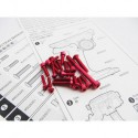 Hiro Seiko M17 Light Weight Screw Set (Red)